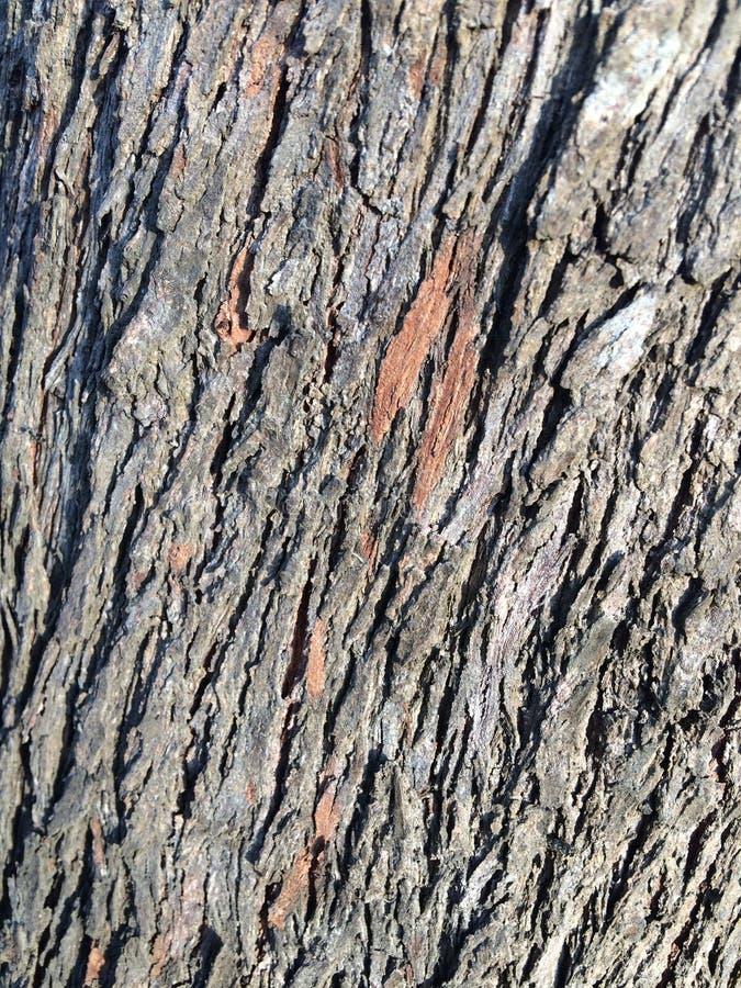 Vieux détail en bois B de texture image stock
