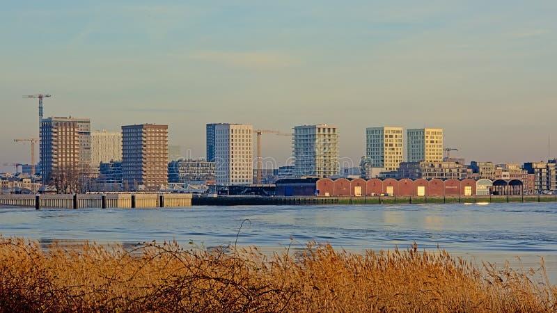 Vieux entrepôts et nouveaux gratte-ciel de residentail dans Anwerp photographie stock libre de droits