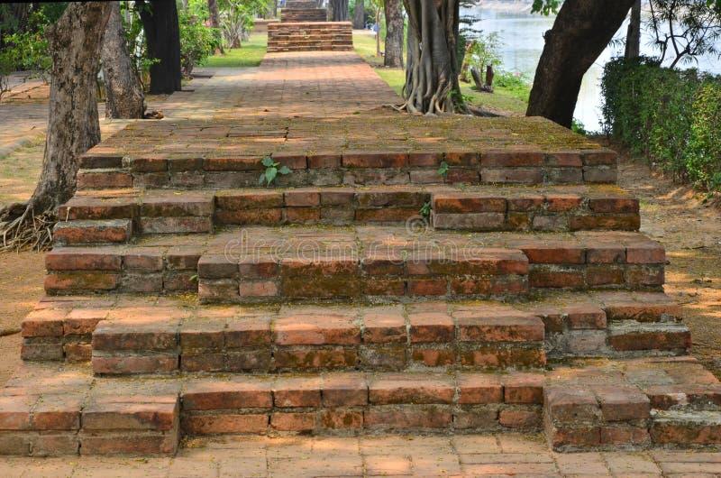 Vieux escaliers et voie de brique avec de grands arbres en parc image stock