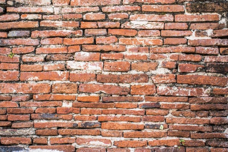 Vieux fond d'image de texture de mur de briques Le rouge grunge monopolisent la parole le fond photo libre de droits