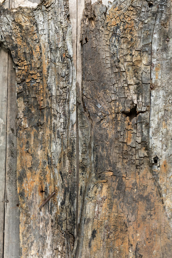 Vieux fond en bois approximatif photo libre de droits