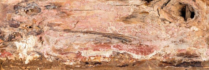 Vieux fond en bois de texture photos libres de droits