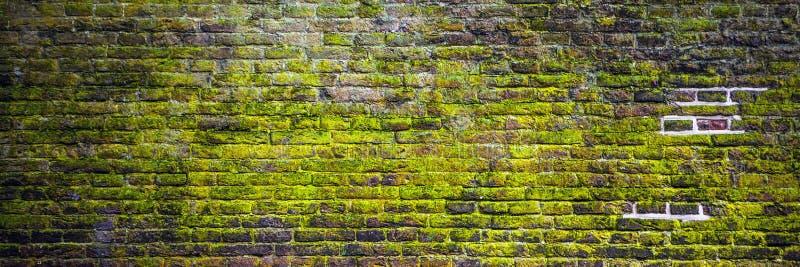 Vieux fond grunge de mur de briques couvert de la mousse photos libres de droits