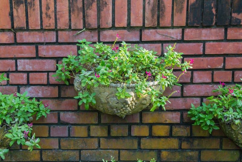 Vieux fond rouge détaillé de mur de briques photographie stock