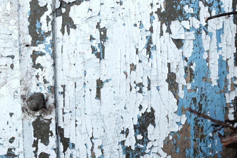 Vieux fond rustique bleu-clair peint en bois, épluchage de peinture photos stock