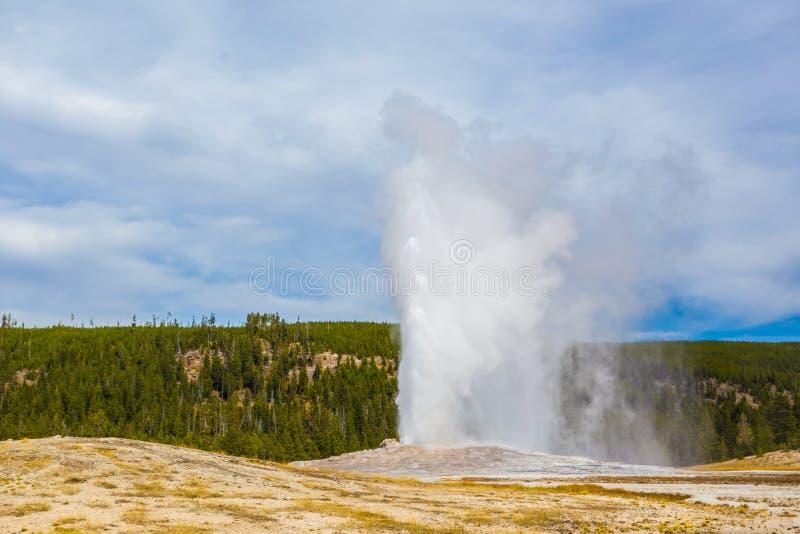 Vieux geyser fidèle dans Yellowstone NationalPark photo stock