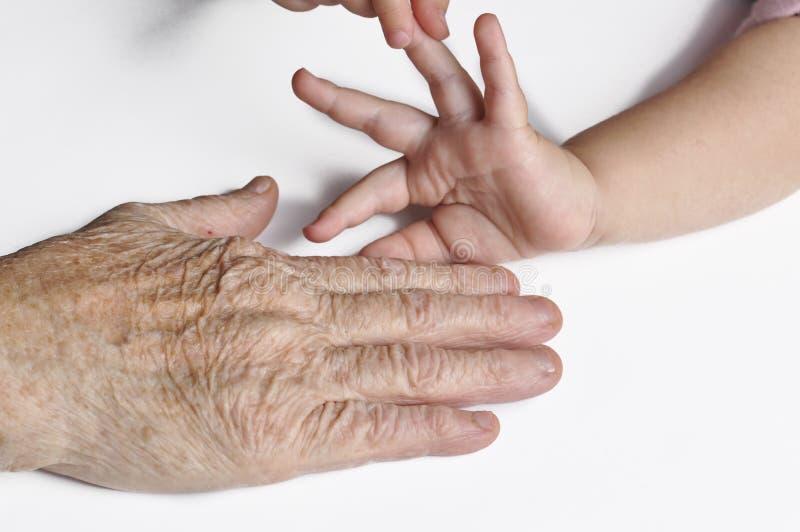 Vieux grandmother& x27 ; main et un jeune child& x27 de s ; main de s d'isolement sur le fond blanc Mains d'isolement sur le fond images libres de droits