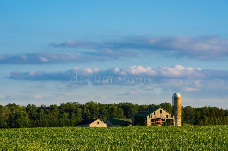 Vieux grange et silo au coucher du soleil images stock