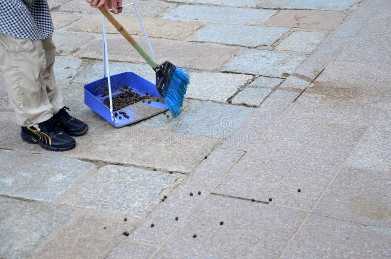 Vieux granules japonais de cerfs communs de nettoyage de balayeuse de femme au passage couvert de T images stock