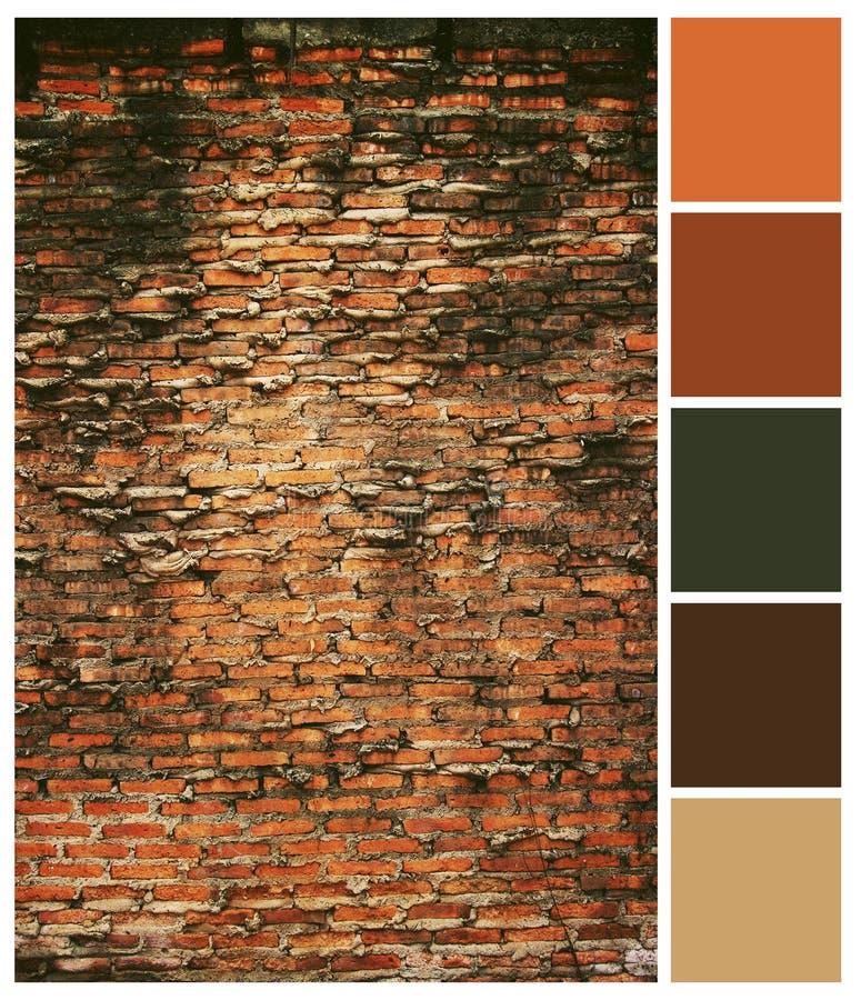 Vieux guide de palette colorée de fond de mur de briques image libre de droits