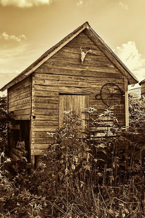 vieux hangar de stockage de ferme photo stock image du weathered envahi 42348118. Black Bedroom Furniture Sets. Home Design Ideas