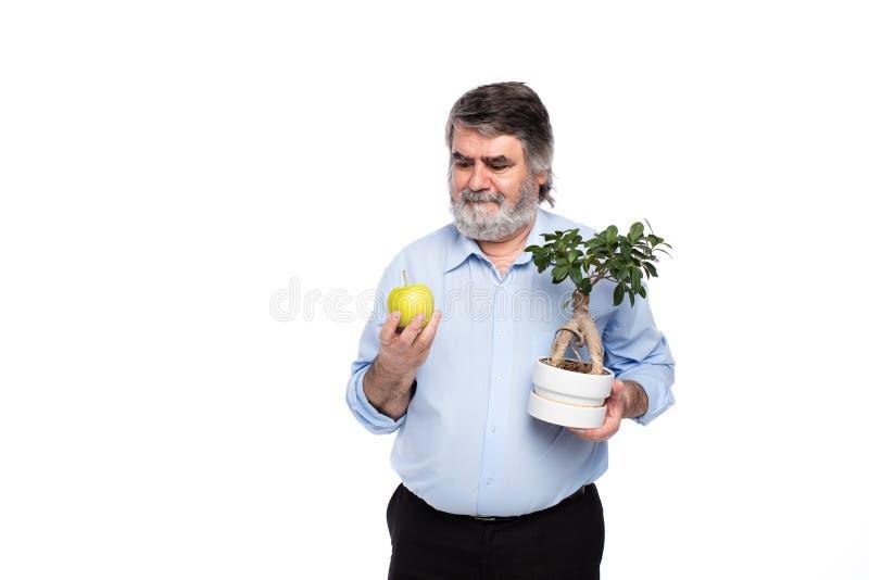 Vieux hommes avec les cheveux gris ayant le petit arbre dans des mains photos stock
