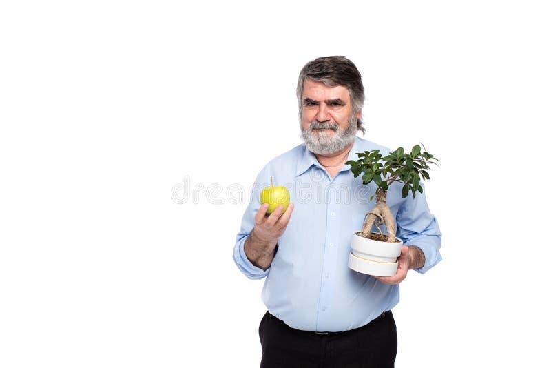 Vieux hommes avec les cheveux gris ayant le petit arbre dans des mains image stock