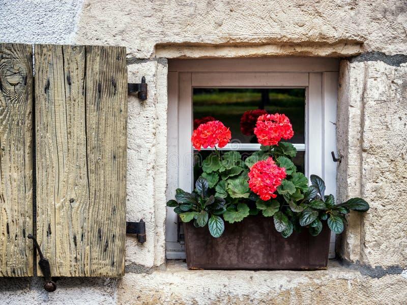 Vieux hublot et fleurs photographie stock