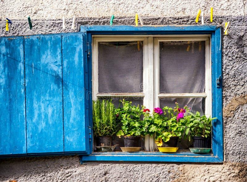 Vieux hublot et fleurs image stock
