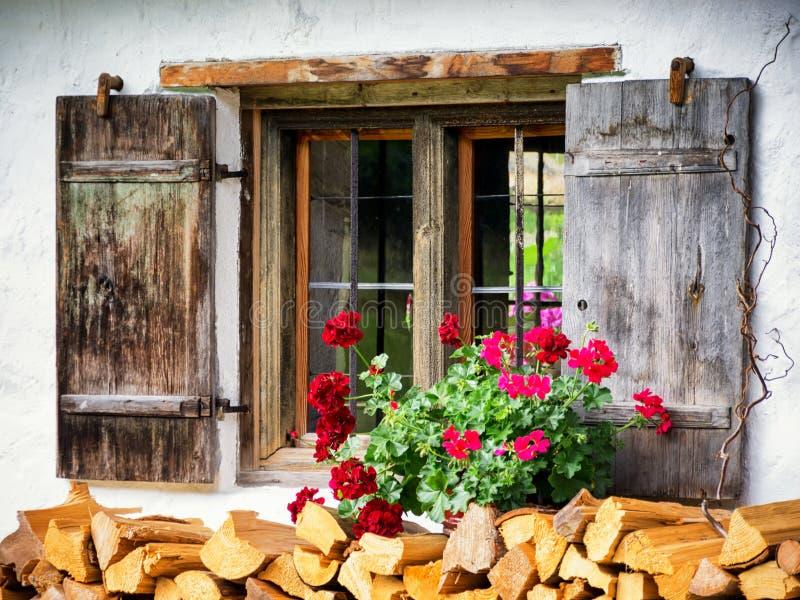 Vieux hublot et fleurs photographie stock libre de droits