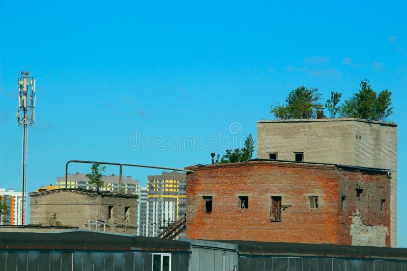 Vieux immeubles de brique s'effondrants avec des arbres s'élevant sur le toit photographie stock libre de droits