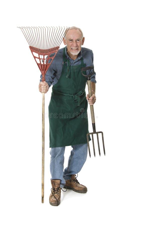 Vieux jardinier fou avec la fourchette et le râteau photos stock