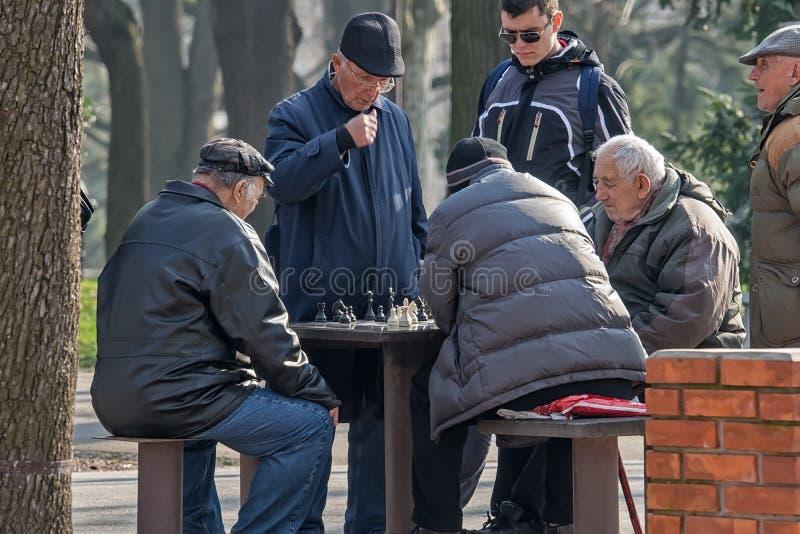 Vieux joueurs d'échecs en parc 2 photos libres de droits