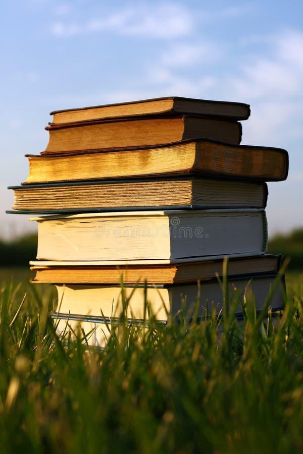Vieux livres empilés dans l'herbe images stock