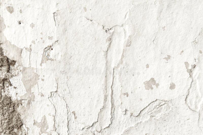 Vieux milieux grunges blancs de textures Fond blanc de mur photographie stock libre de droits