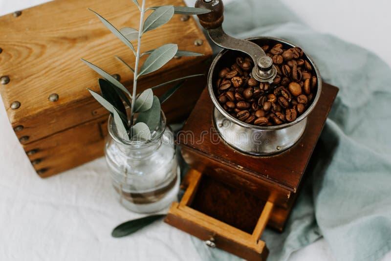 Vieux moulin à café, grains de café et branche d'olivier image stock