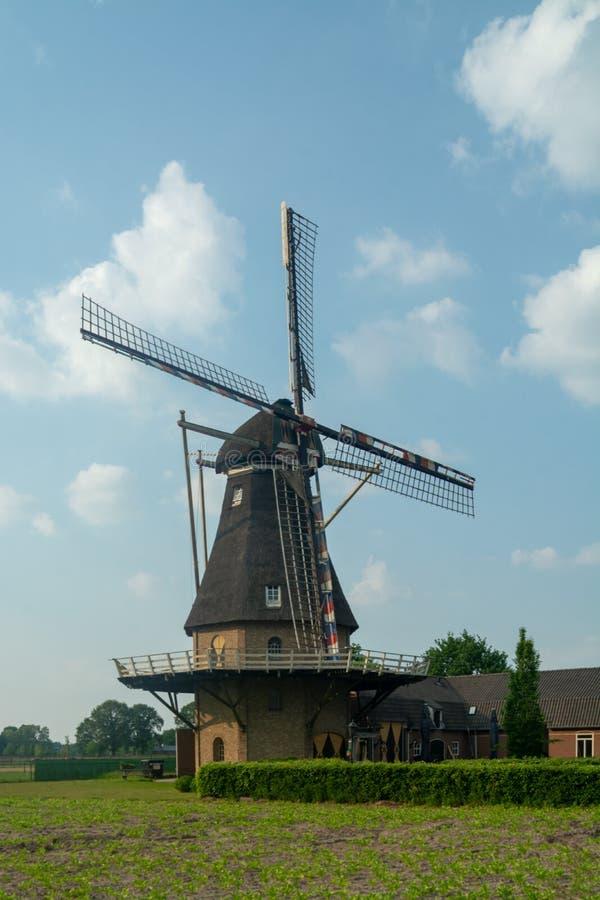 Vieux moulin de vent néerlandais traditionnel de grain, landsca néerlandais de campagne photos libres de droits