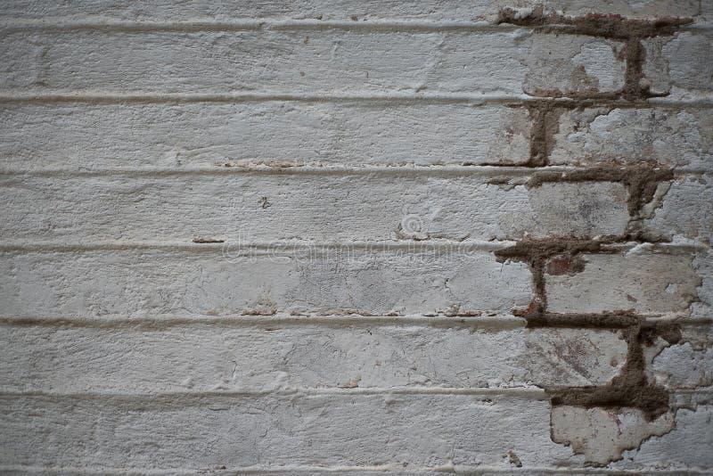 Vieux mur de briques blanc sale avec la peinture d'épluchage photos libres de droits