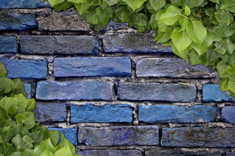 Vieux mur de briques de texture illustration stock