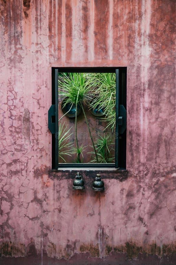 Vieux mur en béton coloré avec le châssis de fenêtre en bois dans tropical photo stock