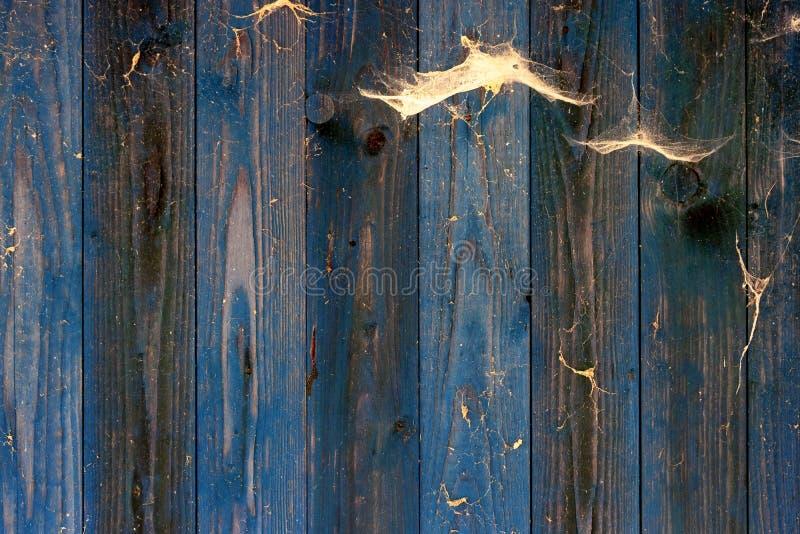 Vieux mur en bois superficiel par les agents de grunge par bleu avec le grain et les toiles d'araignée illustration libre de droits