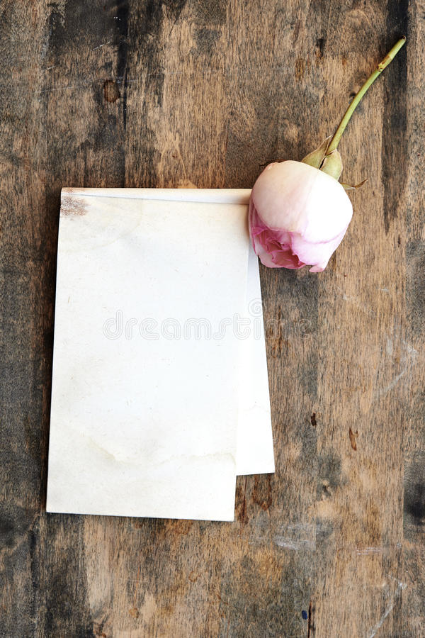 Vieux papier et roses vides photo stock