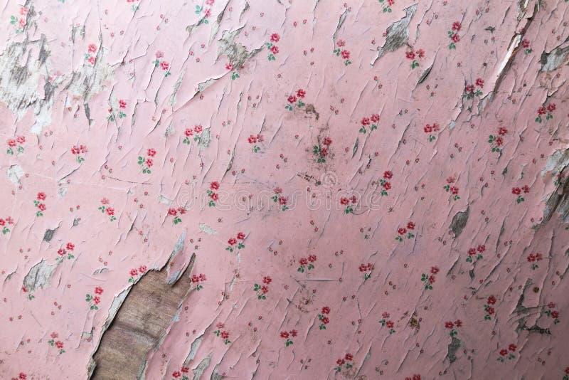 Vieux papier peint de rose d'épluchage photos stock
