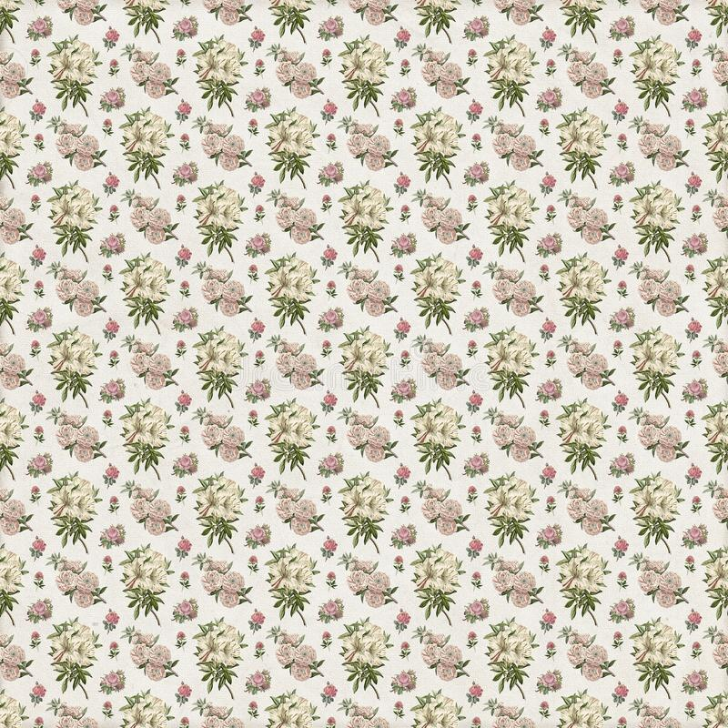 Vieux papier peint floral botanique de modèle illustration libre de droits