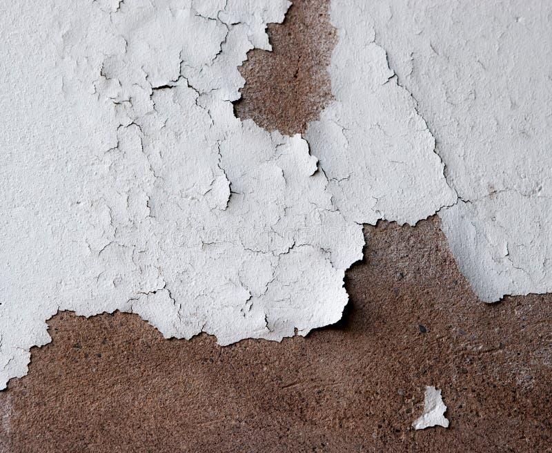 Vieux plâtre exfoliating image libre de droits