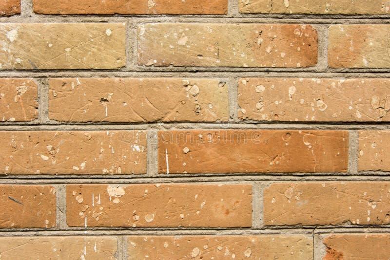 Vieux plan rapproché rouge de mur de briques comme fond et texture Copiez le texte de l'espace photo libre de droits