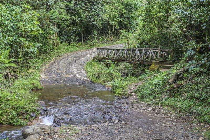 Vieux pont à la réservation naturelle de massif de Peñas Blancas, Nicaragua image stock