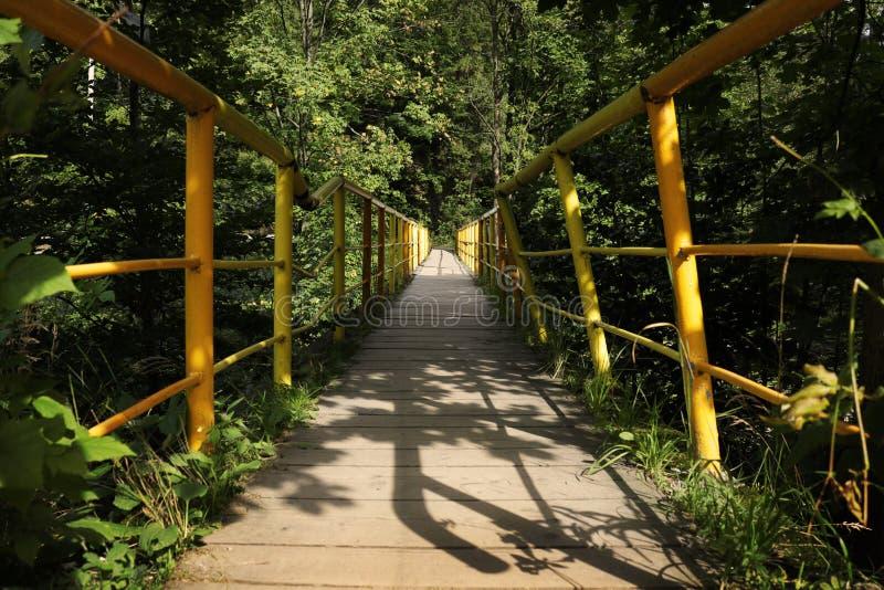 Vieux pont dans la forêt image stock
