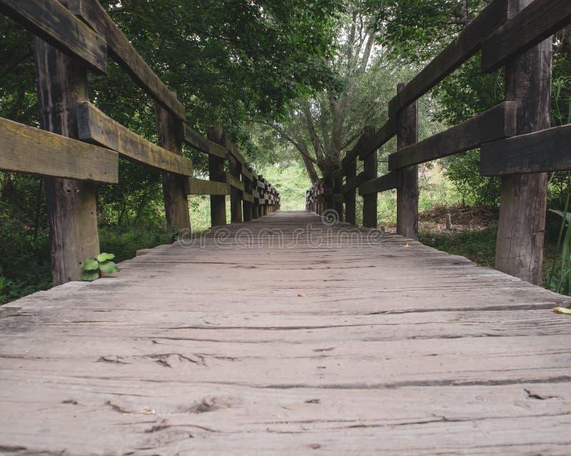 Vieux pont dans la forêt images stock