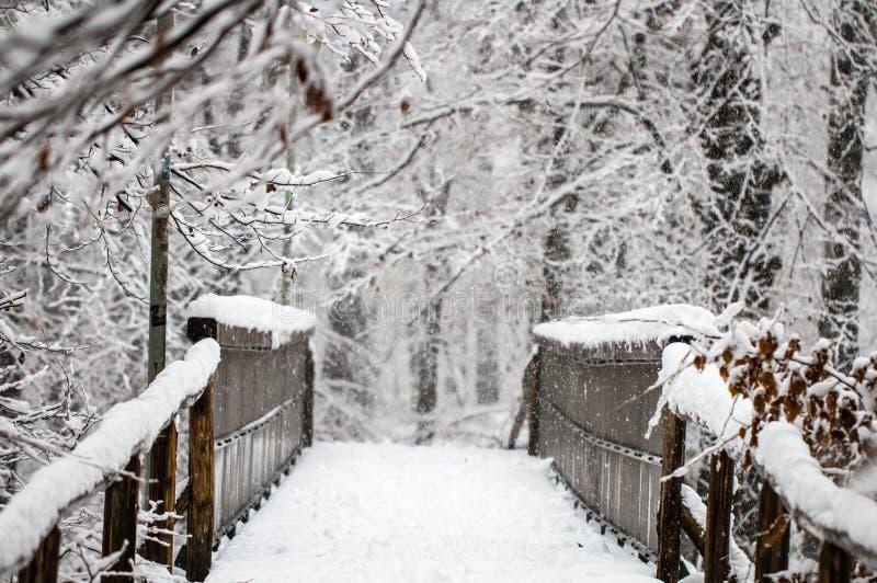 Vieux pont en bois antique de pied dans une forêt d'hiver images stock