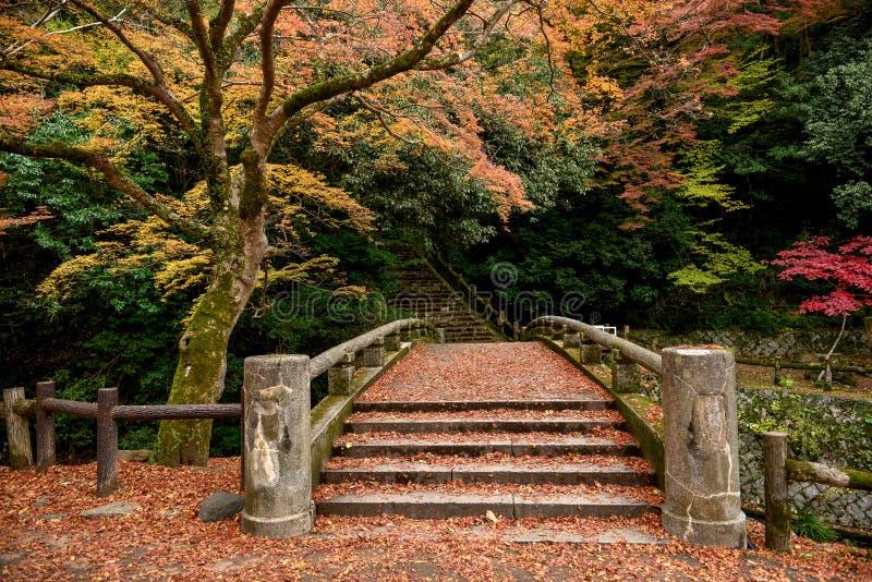 Vieux pont traditionnel japonais photo stock
