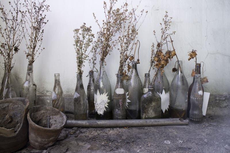 Vieux rétro en verre de Gallary image libre de droits