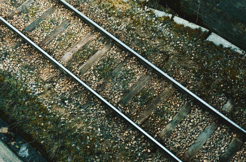 Vieux rails et mousse verte images libres de droits