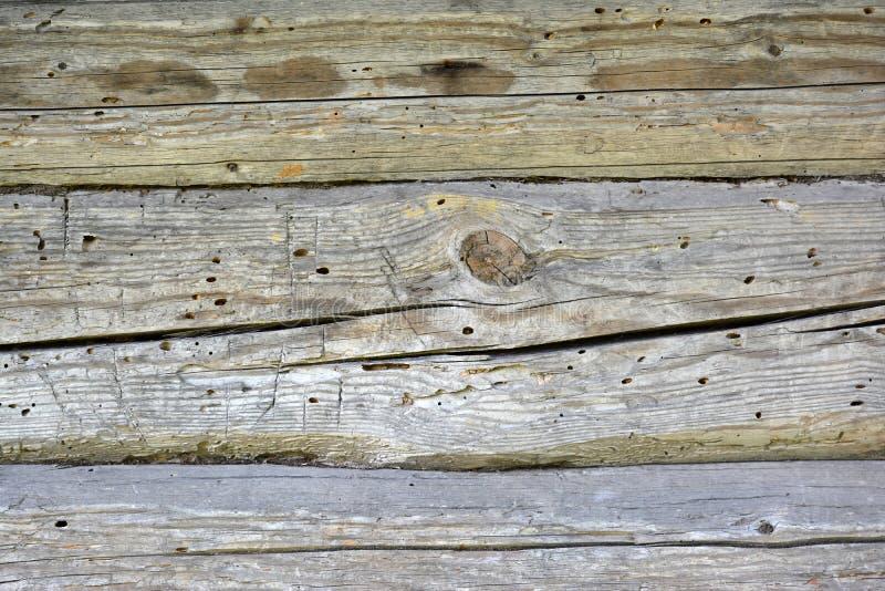 Vieux rondin en bois avec des noeuds et des fissures images stock