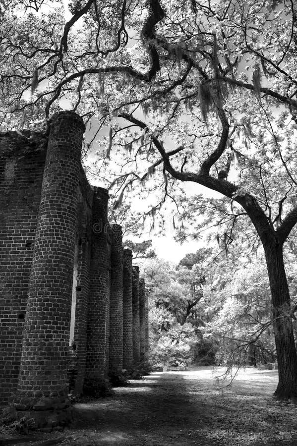 Vieux Sheldon Church Ruins Yemassee, la Caroline du Sud photos libres de droits