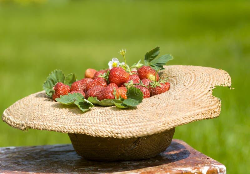 Vieux sunhat avec la fraise dans le jardin photographie stock