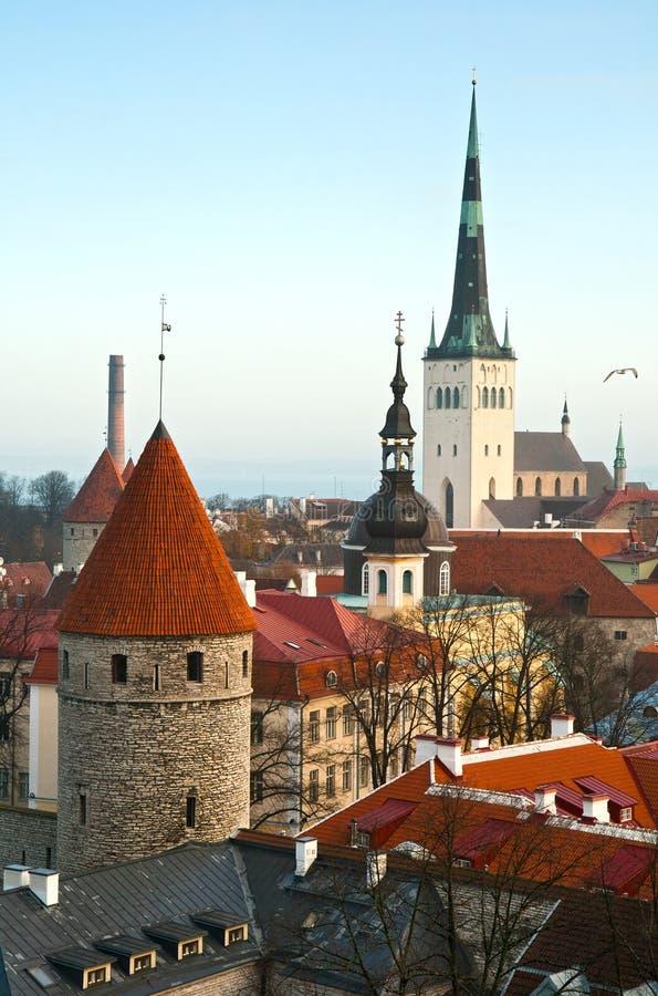 Vieux Tallinn image libre de droits