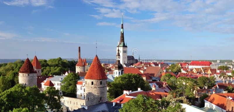 Vieux Tallinn en été photos libres de droits