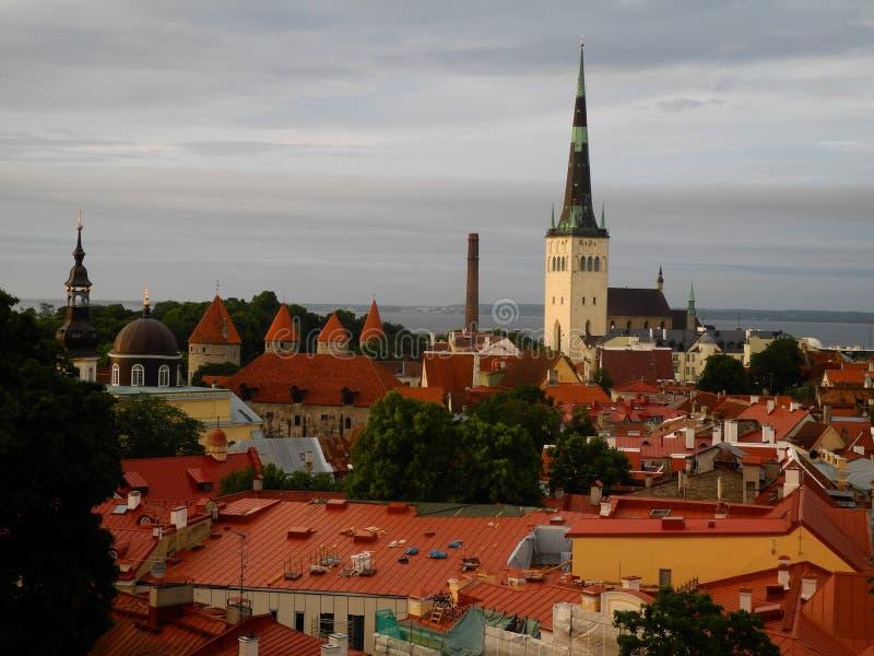 Vieux Tallinn, Estonie image libre de droits