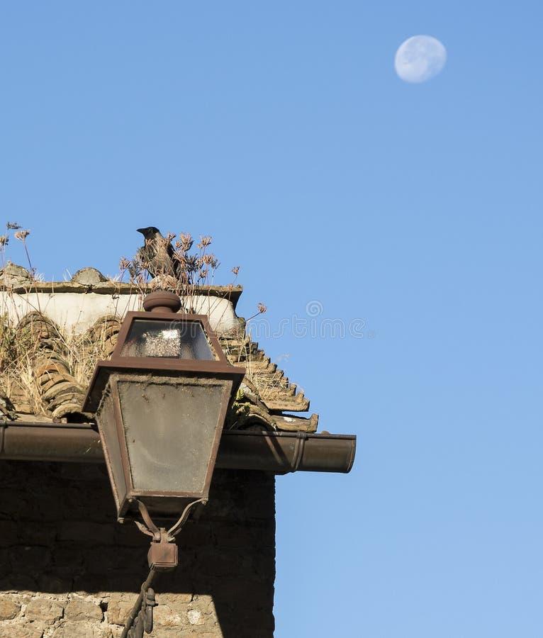 Vieux toit avec la lune photos libres de droits